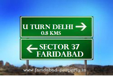 Flats For Sale in Sector 37 Faridabad