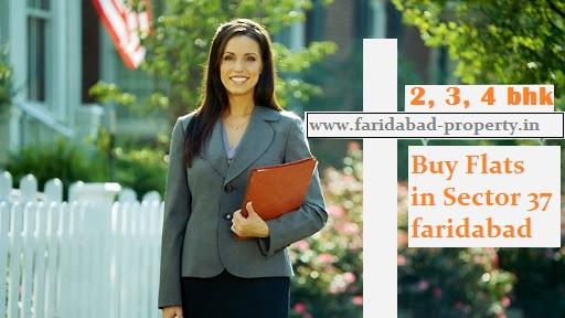 Buy Flats in Sector 37 faridabad